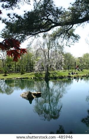 Park in Spring - stock photo