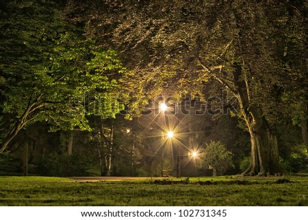 Park in the evening time