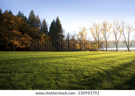 Park, meadows and trees in the fall - stock photo