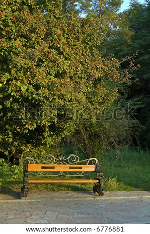 Park's bench