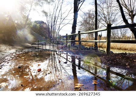 Park sunset.Reflections on water puddle .City park and sunbeam. Outdoors landscape. - stock photo
