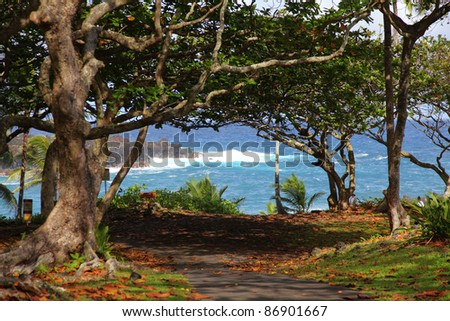 Park with a view of a rocky shore with blue water in Hawaii