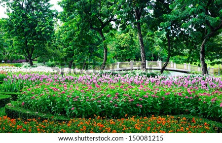 Parks Colourful Flowerbeds  flower yellow circle summer colour garden design formal public nature holiday winding blossom pathway weather walkway sunlight ornament outdoors  vacation beautiful. - stock photo
