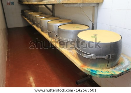 Parmesan cheese typical Italian cheese processing stages from milk to cheese ripening of the shape typical Italian product healthy eating eat well - stock photo