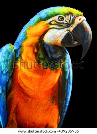 Parrot blue-yellow portrait drawing. Ara ararauna. Blue and yellow macaw drawin. Colored pencil drawing Macaw. Classic drawing Macaw. Detailed drawing Macaw. - stock photo