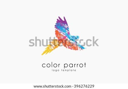 Parrot logo design. Color parrot. Bird logo. Exotic logo. - stock photo