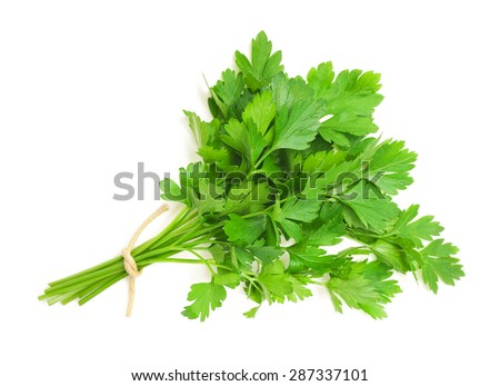 parsley bunch isolated on white background - stock photo