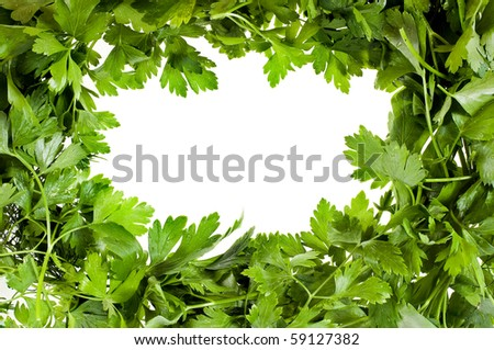 parsley frame  background for your text