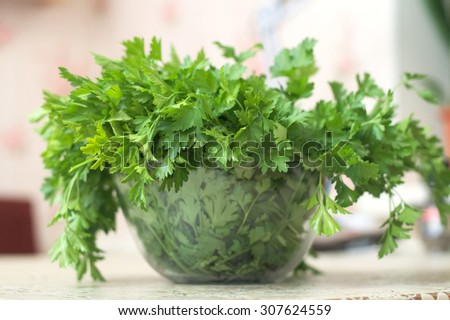 parsley leaves fresh herb on the table closeup