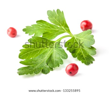 Parsley leaves with red peppercorns isolated on white background, closeup - stock photo
