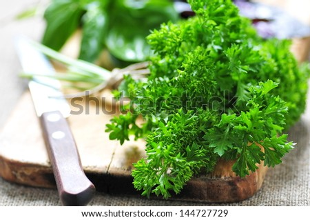 Parsley on cutting board - stock photo