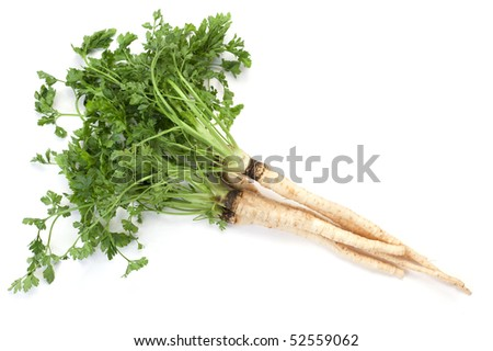 Parsley root with leafs isolated on white background