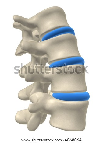 part of a spine - stock photo