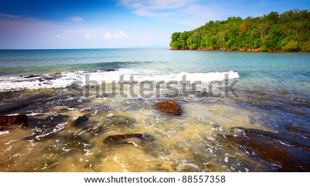 Part of a tropical island with green trees in sea