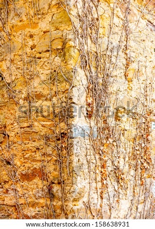 Part of an old building at Portaria village on Pilion mountain in central Greece - stock photo