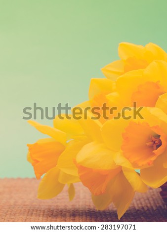 Part of bouquet daffodils on tablemat against green background, retro toned - stock photo