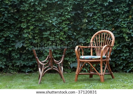 Part of garden. - stock photo