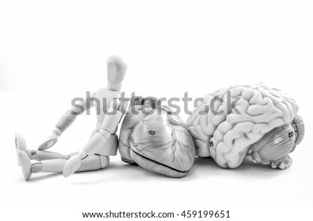 part of human body model with black and white color concept - stock photo
