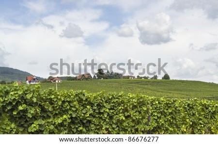 part of Mittelbergheim, a village of a region in France named Alsace - stock photo