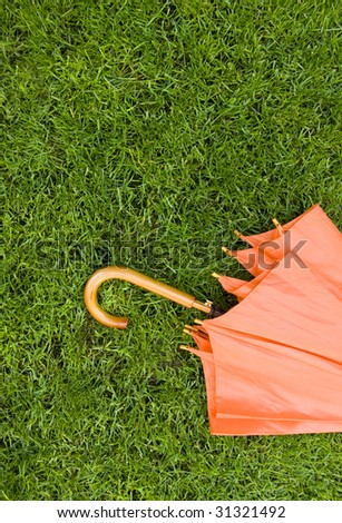 Part of orange umbrella on beautiful green grass