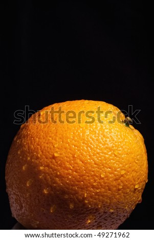 Part of orange with water drops isolated against black background with selective focus