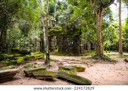 Part of the Ta Prohm (Rajavihara), a temple at Angkor, Province, Cambodia. It was founded by the Khmer King Jayavarman VII as a Mahayana Buddhist monastery and university. - stock photo