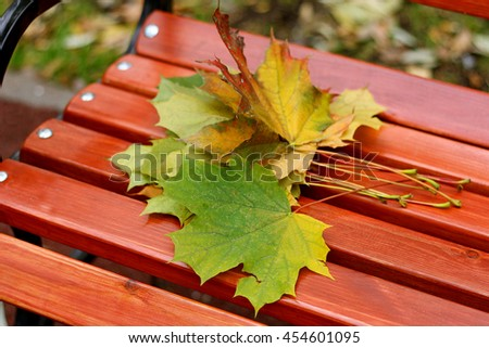 Part of the wooden benches in the Park, on which lay a small bouquet of autumn maple leaves. - stock photo