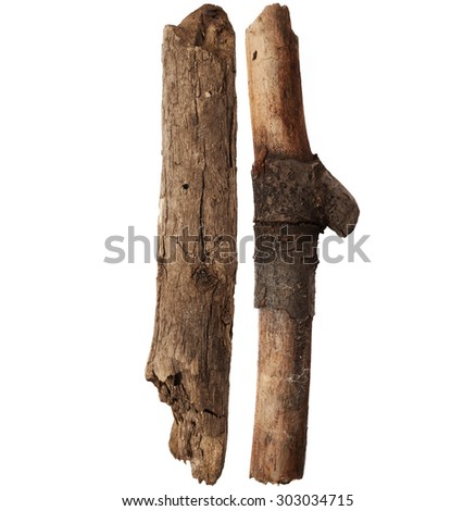 Part of tree trunk isolated on white background