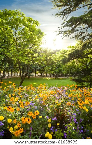 Parterre plenty of flowers rounded by trees at sunset - stock photo