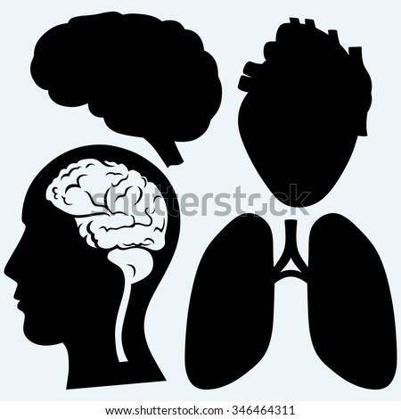 Parts of the body. Heart, lung, head and brain. Isolated on blue background. Raster silhouettes - stock photo