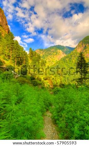 Parvati Valley, North India - stock photo