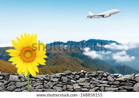 Passenger airliner flight in the blue sky - stock photo