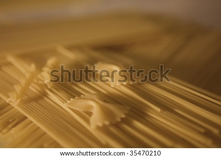 Pasta butterfly and spaghetti