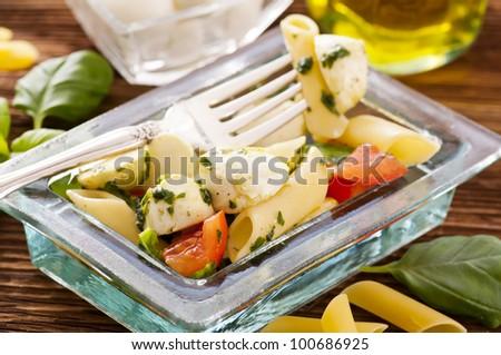 PAsta with mozzarella - stock photo