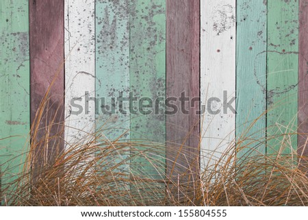 pastel color messy wooden wall with dried grass - stock photo