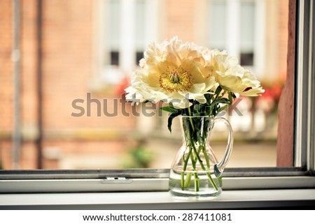 Pastel Colored Peony Flowers at the Window - stock photo