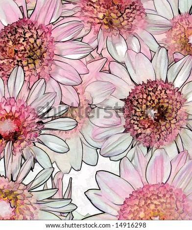 Pastel Mums - stock photo