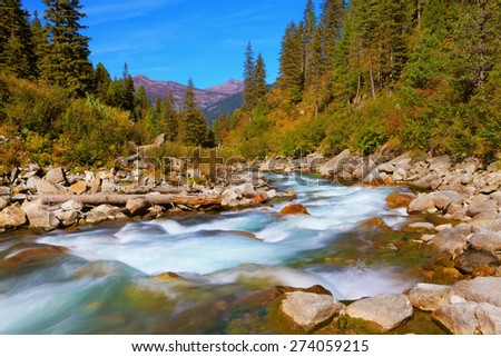 Pastoral in the Alpine mountain valley in Austria. Cascades of cold water at the source of the famous Krimml waterfalls. Rapid mountain stream of coniferous forests - stock photo