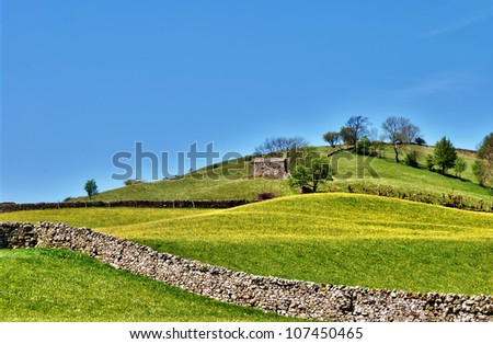 Pastoral scene of lush English meadows on a gentle hillside slope crossed by a traditional dry-stone wall in the Yorkshire Dales - stock photo