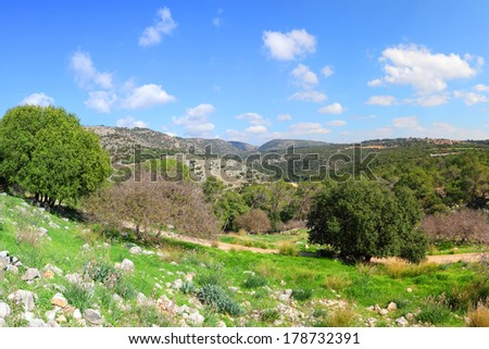 Pastoral spring landscape of the top Galilee, Israel.