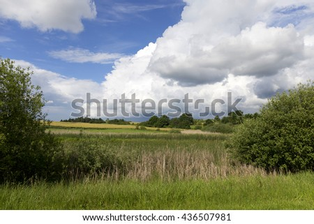 Pasture in the storm summer country Landscape