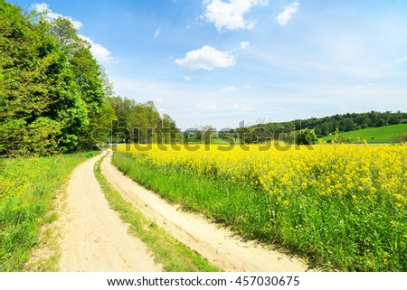 Pasture view of a road and rapeseed fields in Poland