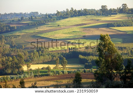 Patchwork of farms and forest in rural Ethiopia - stock photo