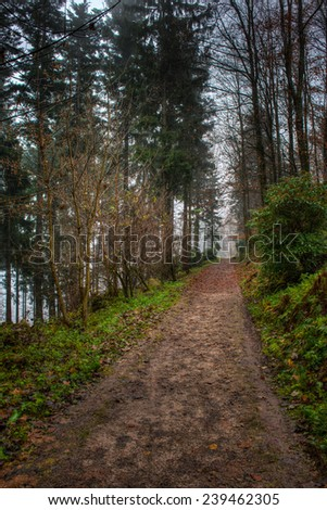 Path along Merkur Mountain in The Black Forest, Baden Wurttemberg, Germany on a cold day in Autumn - stock photo