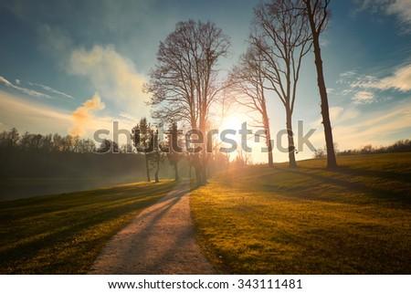 Path autumn park - stock photo