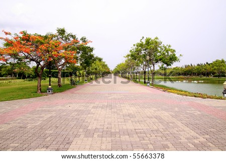 Path filled with trees sideways. - stock photo