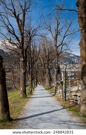 path for walks in the park - stock photo