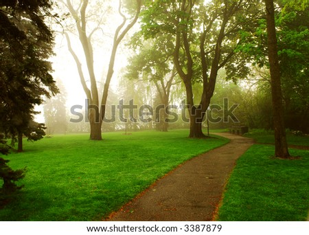Path in a green foggy park in the spring - stock photo