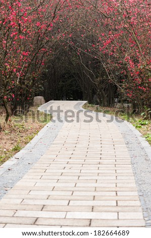 path in a park - stock photo