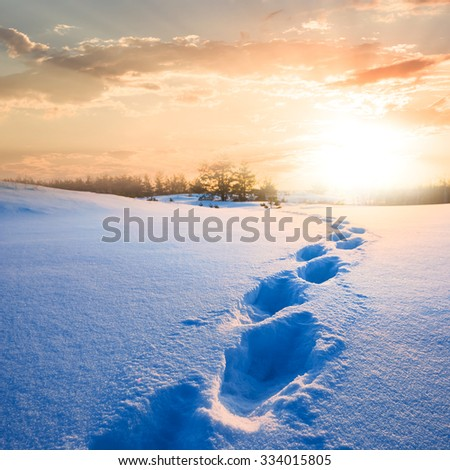 path in a snow to a sunset - stock photo
